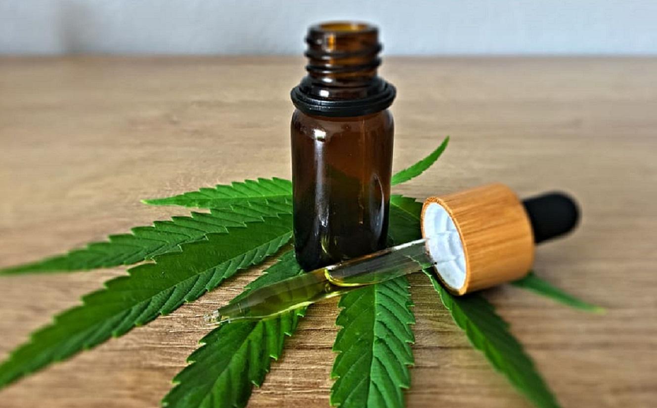 Avanza el uso de derivados de la cannabis para uso medicinal.