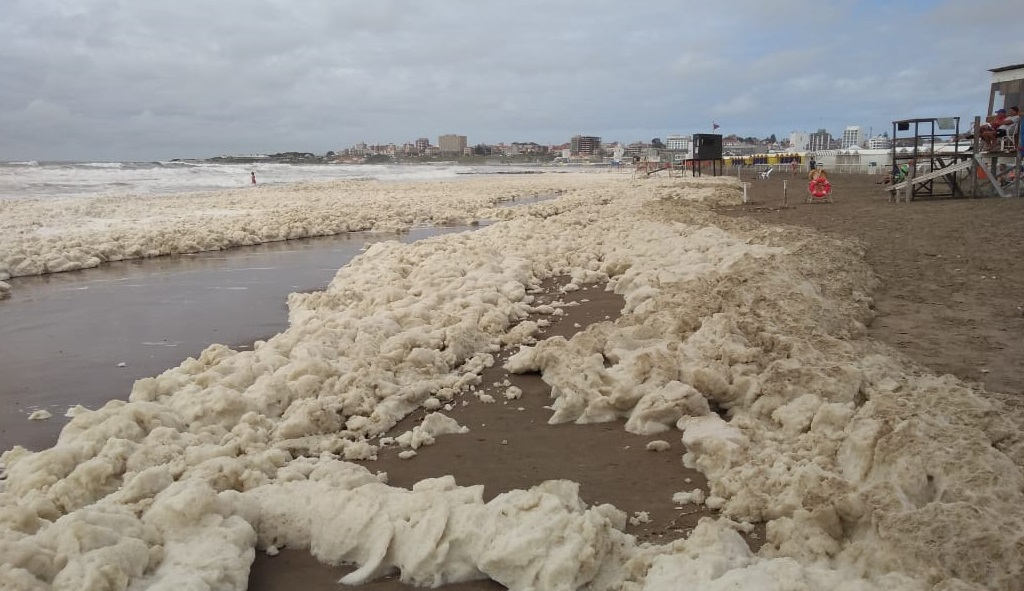 Explosión de algas en la cossta de Mar del Plata en Argentina.